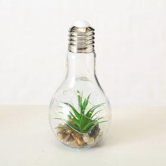 Dekorpære Med Grønn Plante & Ledlys
