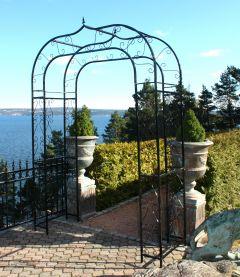 Provence Rosebue