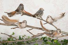 Nydelige Fugler