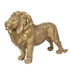 Råflott Majestetisk Løve