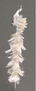 Lang Dekorativ Hvit Påfugl