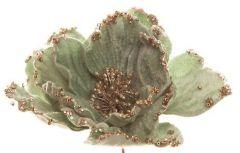 Vakker Isgrønn Fløyelsblomst Med Klips